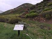 Future trail site