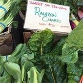 Farmer's Market - Rainbow Chard