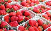 Strawberry baskets for Strawberry Days